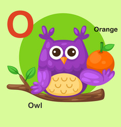 Isolated animal alphabet letter o-owl orange vector