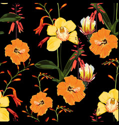 orange yellow exotic tropical flowers pattern vector image
