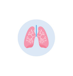 Respiratory system lungs icon in circle flat vector