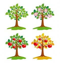 apple tree at different seasons vector image vector image