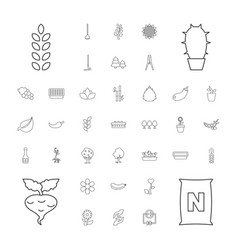 37 plant icons vector