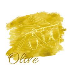 branch olives sketch vector image