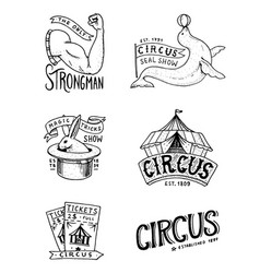 carnival circus badge banner or poster vector image