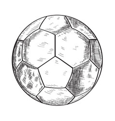 sketch of a soccer ball vector image