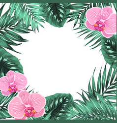 tropical jungle orchid palm monstera leaves frame vector image