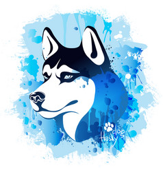 watercolor image of the head of a dog of the husky vector image