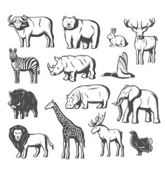 wild animals and birds icons vector image