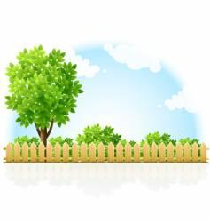fenced garden vector image