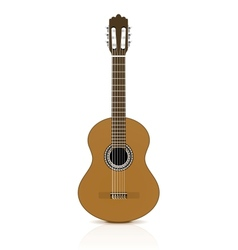 Classical guitar on white background vector