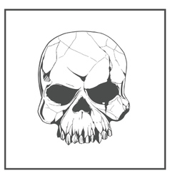 hand drawn skull the symbol day dead vector image