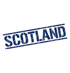 Scotland blue square stamp vector image