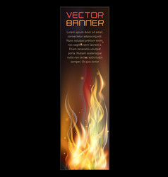 vertical fire flame banner vector image