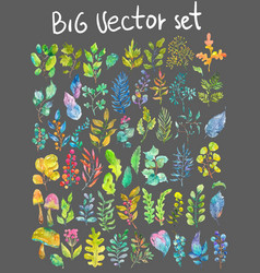 Watercolor natural collection vector