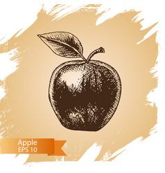 sketch - apple - vector image