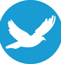 Dove for peace concept and wedding design Flying vector image vector image