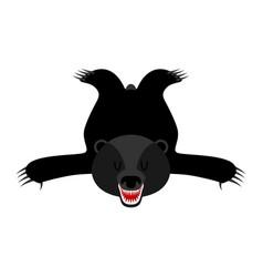 Bearskin baribal skin of american black bear vector