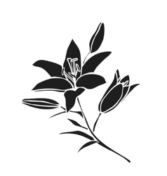 Black silhouette Lily vector image
