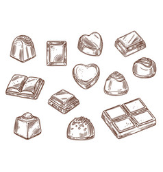 Cacao sweets chocolate candy confectionery food vector