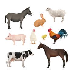 domestic animals farm birds chickens active vector image