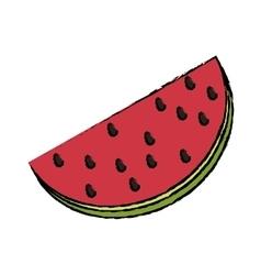 Fresh watermelon fruit vector