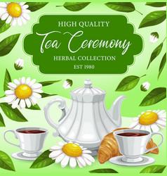 herbal tea drinking ceremony cartoon poster vector image