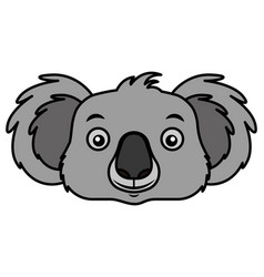 koala face australian wildlife white background vector image