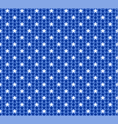 pattern from national flag vector image