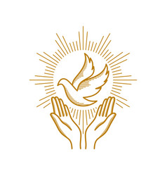 Praying hands and dove a symbol of the holy spirit vector