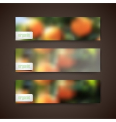 Set of banners with blurred background of orange vector