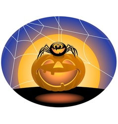 Spider and pumpkin vector