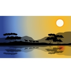 Beautiful silhouette of zebra in riverbank vector image vector image