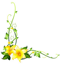 border template with yellow flowers vector image vector image