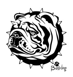 drawing of a dog of breed vector image
