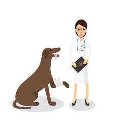Cute female veterinarian doctor with dog vector