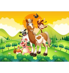 Farm animals in the field vector image vector image