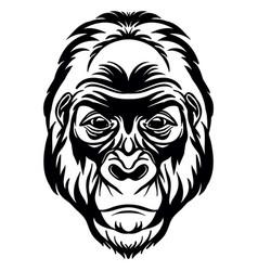 Head mascot gorilla isolated on white vector