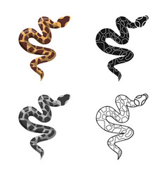 Isolated object serpent and venomous icon vector