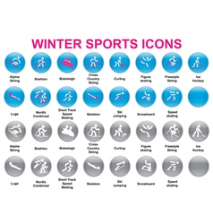 wintersports icons2 vector image