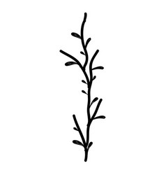 rustic branch plant decoration vector image vector image