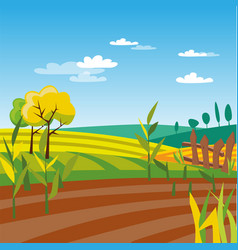 Cultivated agriculture field rural landscape vector