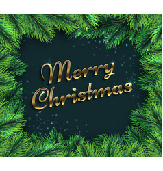 fir tree branches merry christmas glamour vector image