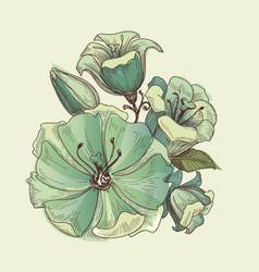 floral bouquet lilies design vector image