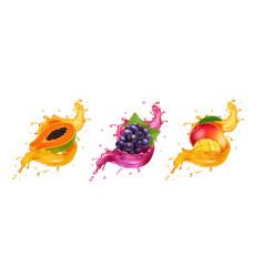 fruits in splash juice mango grapes papaya vector image