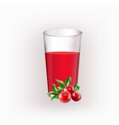 Glass cup with juice vector image