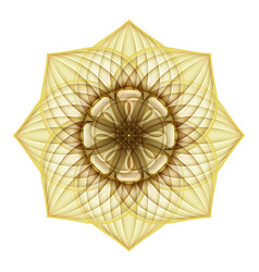 gold beautiful decorative ornate mandala vector image