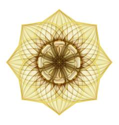 Gold beautiful decorative ornate mandala vector