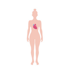 Human body with heart inside - medicine diagram of vector