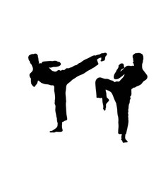 Martial art silhouettes vector