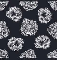 seamless pattern with hand drawn chalk ranunculus vector image