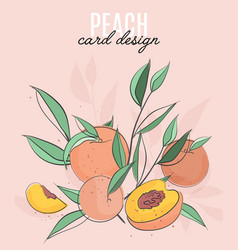 template with peaches leaves and text vector image